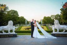 Brookfield Zoo Wedding / Wedding at the Brookfield Zoo