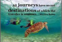 Travel Quotes / Travel Quote 'Post Cards' perfect to use as a Facebook Post  / by Catherine Heeg - Customized Management Solutions