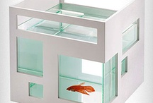 Living in a fishbowl?
