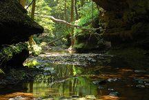 Alabama / Cheaha State Park looks like a winner.