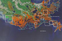 Louisiana Enviromental News / Environmental news from around the state