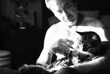Men and Cats ... We love you!