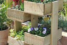 Grow your own Veggies on a door