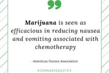 Cannabis Quotes / Quotes about Cannabis/Marijuana/Weed. Focusing on its healing properties, medical cannabis, mmj. Cannabis is a blessing!