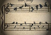 THEME...wings to FLY / Birds