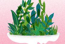 Plantas e fungos