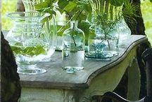 planter / blomsteroppsatser og hageplanter