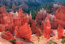 Bryce Canyon National Park / Travel Photos to Inspire Your Bryce Canyon National Park Vacation Planning! / by AllTrips