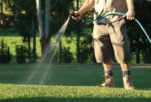 Turf Suppliers Sydney / Sydney Lawn and Turf Supplies Turf Suppliers Sydney - http://www.sydneylawnandturfsupplies.com.au/turf-services/turf-supplies-for-home/