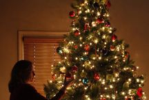 Christmas Photography / by Jay Van
