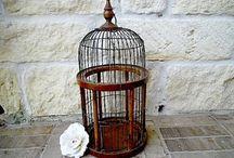 Birdcages / by Allison Wilcox
