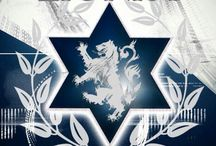 Ani Zionist