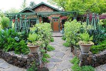 Gardening / by Marlen Waters