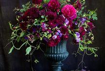 Floristisches für die Prüfung