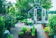 växthus & trädgård