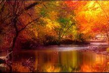 Take me there... / by Karen Marsh