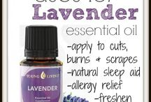 Essential Oils / by Stephanie Connor