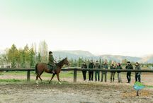 Horseback riding at Nafplio via LandLife / Whether as a sport or as a hobby, or simply for experience, riding is exciting, offering great chills of excitement. Every aspiring rider can test his/her skills in riding and experience the first basic steps of contact with the horse in a safe, fenced area.