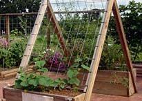 vertikaler Gemüsegarten