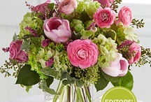 Better Homes and Gardens Collection / by FTD Flowers