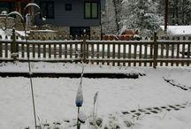 Instagram https://www.instagram.com/p/BRiiGPdDYTV/ March 12, 2017 at 09:22AM #snow #winter #storm Good morning!