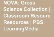 Teaching Writing Secondary / teaching writing, middle school, high school, English, new teachers, teachers, lesson planning, teacher resources