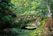 Bridges / by Isobel Westfall