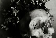 черепа