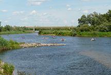 Kajakiem po rzekach Wielkopolski / Na tej tablicy skupimy się na pokazaniu piękna przyrody na szlakach kajakowych w Wielkopolsce.