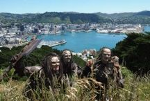 Wellington / The beautiful capital city of New Zealand