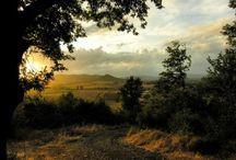 Toscana / Immagini della Toscana