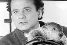 HOLIDAY FEB - groundhog day  / by Corrie Lawrence