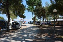 Grado Punta Spin kemping / A 4*-os Punta Spin kemping Gradoban, Olaszországban. Homokos tengerpart, hangulatos kemping, 3 medence, tengerparti étterem, játszótér, animációk egész nap.....