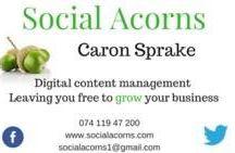 Social Acorns
