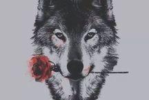 My Husband Is a Werewolf