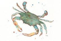 crab tattoo / by Nancy Solla