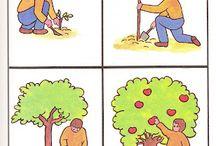 φυτά και ζωή
