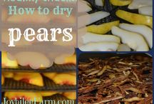 Food - Drying