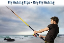 Fishing Tips / If you take fishing seriously, whether as your hobby or sports, you need to look for a fishing rod that is both durable and strong to meet your fishing requirements. / by Alex Plastering Contractor