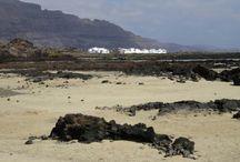 schelpen zee strand