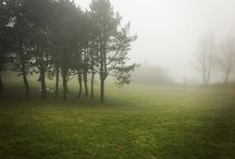 Instagram A foggy day in Skurup!  #foggy #skurup
