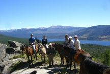 Summer in Patagonia / by Yvonne Corbett