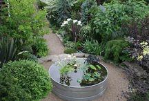 Get outside /garden / Gardens and outdoor stuff