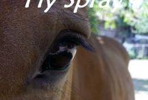 Hest og pleie