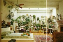 Dreamy Interiors / Heavy on houseplants, natural wood, + bright colors