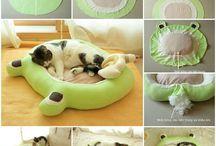 Cat Beds & Condos