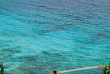 Life in the Islands of the Indian Ocean / Maldives, Seychelles, Polynesia. Island Life