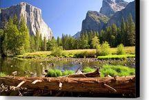 american landscape prints
