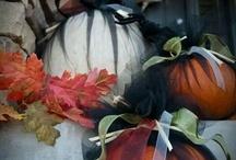 Citrouilles - décoration