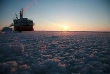 Arctic Pics & News